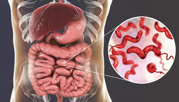 Ăn nấm mỗi ngày đem tới 3 lợi ích tuyệt vời cho sức khỏe, nhưng có 3 nhóm người không nên ăn kẻo hại người - Ảnh 2.