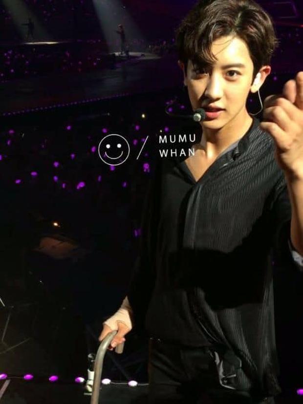 Fan đi concert bắt trọn visual đời thực của idol Kpop cự ly gần: Vóc dáng đỉnh cao nhưng có đẹp như trong MV? - Ảnh 10.
