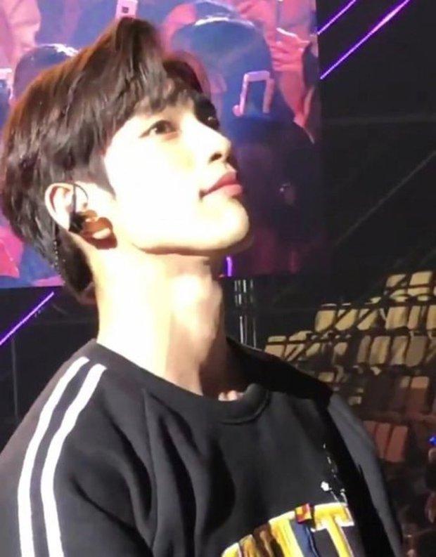 Fan đi concert bắt trọn visual đời thực của idol Kpop cự ly gần: Vóc dáng đỉnh cao nhưng có đẹp như trong MV? - Ảnh 29.