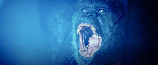 Siêu bom tấn Godzilla vs. Kong: chấp nhận sướng mắt thì phải tạm... cất não đi - Ảnh 11.