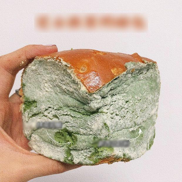 Chiếc bánh mốc xanh ở Trung Quốc nhìn vào ai cũng hãi, nhưng 500 khách hàng ăn thử đều khen ngon hết lời vì một lý do - Ảnh 1.