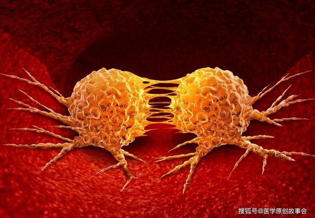 6 thói quen trong cuộc sống cho thấy bạn có cơ thể miễn nhiễm với ung thư - Ảnh 1.