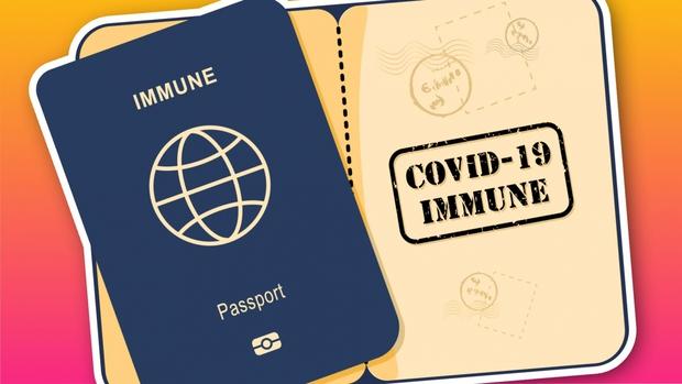 """Liệu hộ chiếu vaccine sẽ là tấm """"thẻ xanh"""" vượt đại dịch Covid-19? - Ảnh 1."""