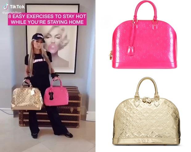 Paris Hilton vui tay sắm túi Hermès bé xíu cho cún cưng, soi giá xong mà giật mình! - Ảnh 7.