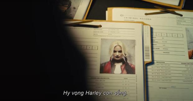 8 chi tiết đang gây xôn xao từ trailer đậm bạo lực của The Suicide Squad: cốt truyện cực chấn động, người quen từ Marvel sẽ góp mặt? - Ảnh 2.