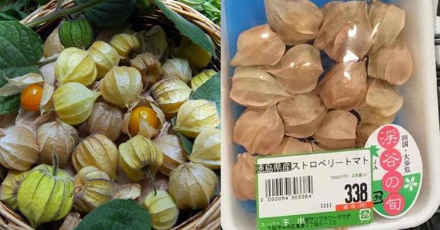 Một loại quả mọc dại đầy đồng quê Việt Nam bỗng gây sốt, giá bán tới 400k/kg - Ảnh 4.