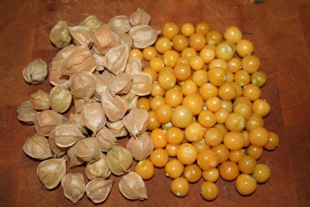 Một loại quả mọc dại đầy đồng quê Việt Nam bỗng gây sốt, giá bán tới 400k/kg - Ảnh 2.