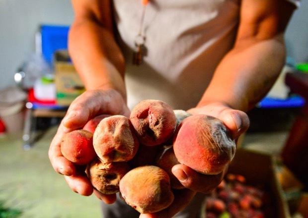 Người phụ nữ 44 tuổi và con gái 12 tuổi cùng phát hiện mắc ung thư ruột vì thường xuyên ăn 4 loại thực phẩm mà nhiều người thích - Ảnh 2.