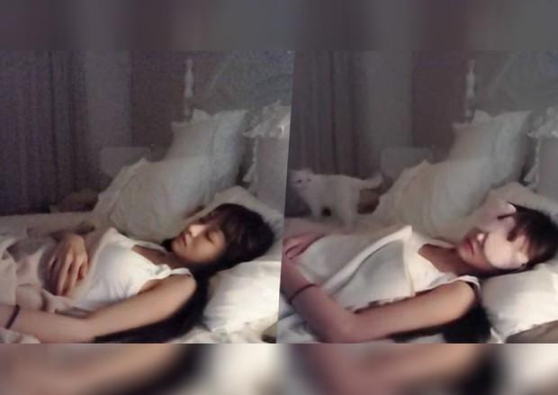Chỉ cần nhắm mắt và ngủ, nữ streamer xinh đẹp bỗng trở thành hiện tượng mạng sau một đêm - Ảnh 1.