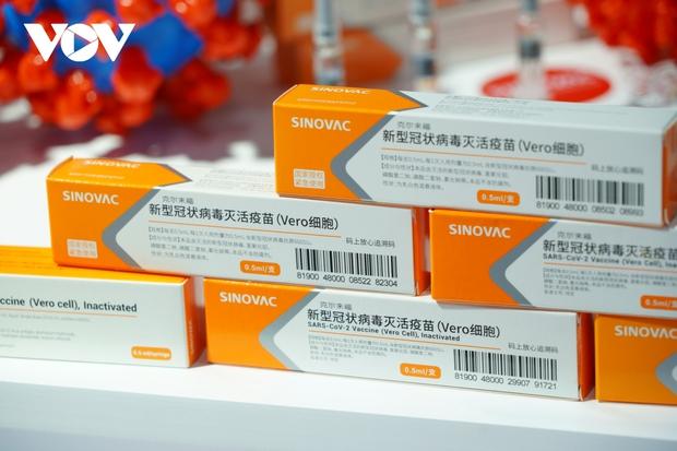 Hong Kong (Trung Quốc): Một người tử vong sau khi tiêm vaccine Covid-19 của Sinovac - Ảnh 1.