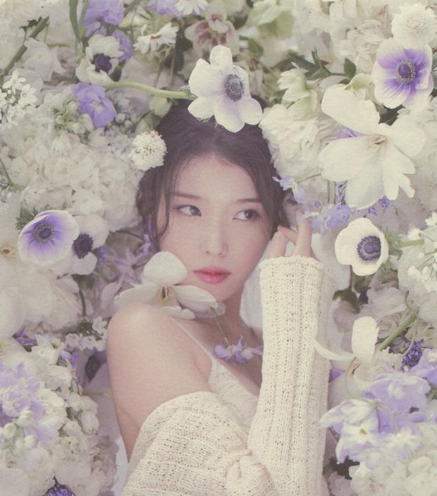 IU gây náo loạn mạng xã hội nhờ tạo hình với tóc hồng cực chất, netizen liên tưởng đến người bạn quá cố Sulli - Ảnh 9.