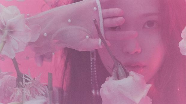 IU gây náo loạn mạng xã hội nhờ tạo hình với tóc hồng cực chất, netizen liên tưởng đến người bạn quá cố Sulli - Ảnh 10.