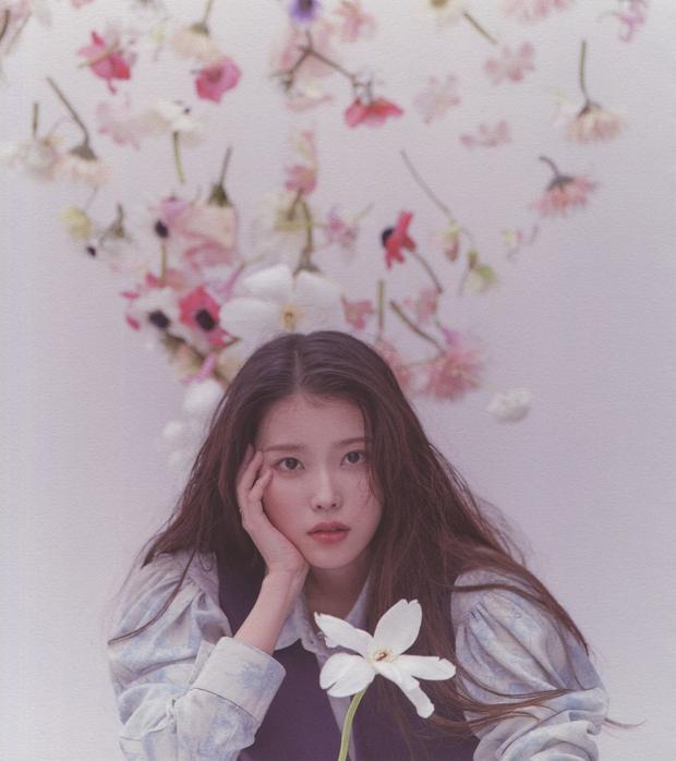 IU gây náo loạn mạng xã hội nhờ tạo hình với tóc hồng cực chất, netizen liên tưởng đến người bạn quá cố Sulli - Ảnh 14.