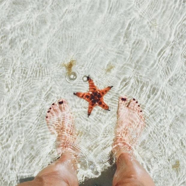 Đừng bao giờ check-in với thứ này khi đi biển Phú Quốc nếu bạn không muốn trở thành kẻ huỷ hoại nền sinh thái! - Ảnh 5.