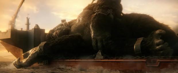 Giải mã toàn bộ tình tiết bí ẩn của Godzilla vs Kong: Chuyện gì đã thực sự xảy ra với quê hương Ninh Bình? - Ảnh 3.