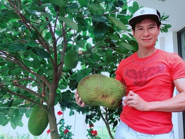 Lý Hải - Minh Hà trồng cây trên sân thượng mà thu hoạch nặng trĩu tay, phải đăng đàn ai ăn thì biếu bớt lấy thảo - Ảnh 7.
