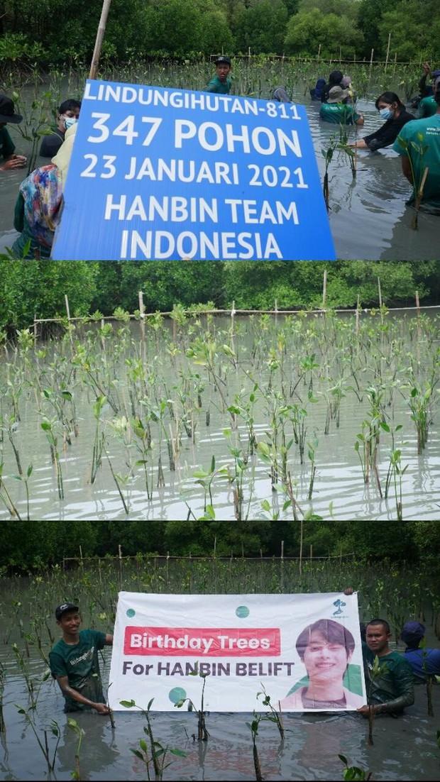Fandom của Hanbin (I-LAND) quyên góp gần 70 triệu đồng, ủng hộ 1000 cây xanh tại vườn quốc gia Bến En - Ảnh 5.