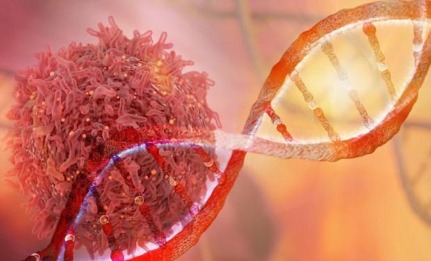 Những người hội tụ đủ 5 đặc điểm trên cơ thể có khả năng miễn nhiễm với bệnh ung thư rất cao, mong rằng bạn có đủ - Ảnh 5.