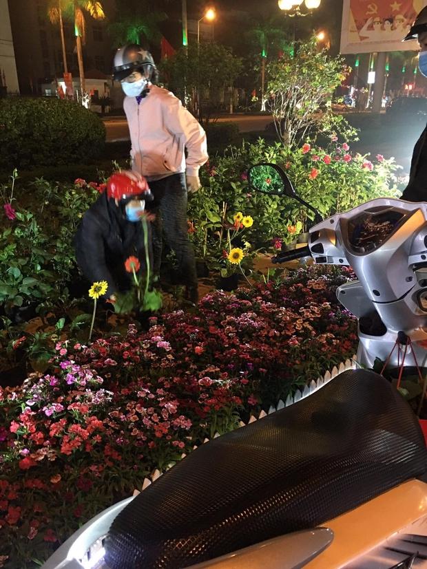 Xôn xao hình ảnh người dân tự ý lấy hoa trên đường hoa xuân Lạng Sơn: Cây còn tươi đẹp đã phá, thật kém văn minh - Ảnh 2.