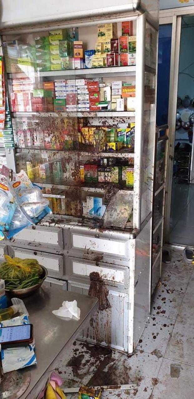Nữ chủ tiệm thuốc tây bị khủng bố bằng sơn, mắm tôm vì em trai mượn tiền giang hồ không trả - Ảnh 2.