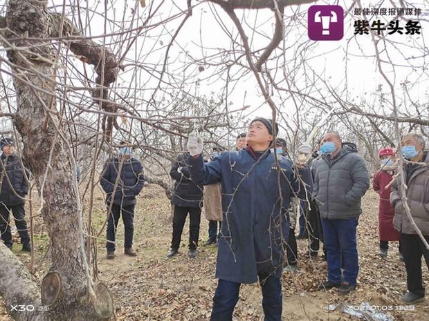 Nổi tiếng nhờ loạt clip livestream, anh nông dân được mệnh danh Vua Táo mở bán khóa học trồng cây trực tuyến và cái kết gây sửng sốt - Ảnh 1.
