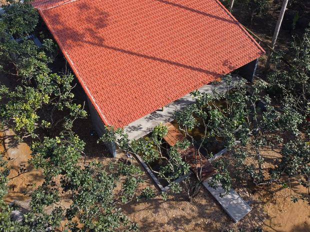 Huế: Ngôi nhà gỗ nằm trọn trong khu vườn ngập tràn hoa bưởi đẹp lạ trên báo Mỹ - Ảnh 15.