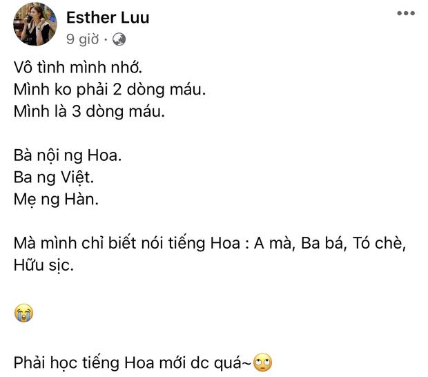 """Hari Won đáp trả căng đét khi mẹ ruột bị xúc phạm """"không có tâm"""" nên con gái nói không rành tiếng Việt - Ảnh 2."""
