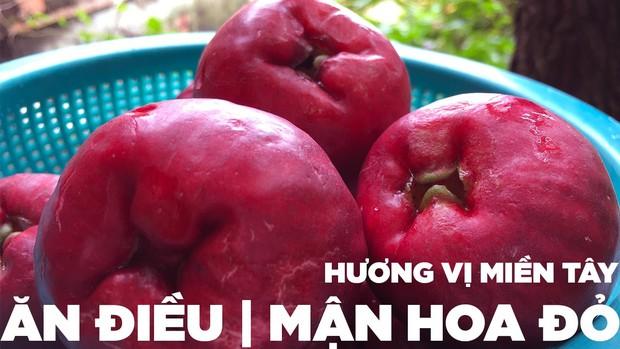 Việt Nam có loại quả lạ khiến ai cũng nhầm lẫn khi lần đầu nhìn thấy, giờ hiếm người trồng nên rất khó ăn được - Ảnh 4.
