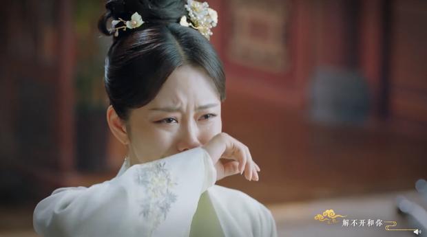 Chung Hán Lương ly hôn với Đàm Tùng Vận vì vợ thân thiết với trai lạ trong Cẩm Tâm Tựa Ngọc - Ảnh 9.