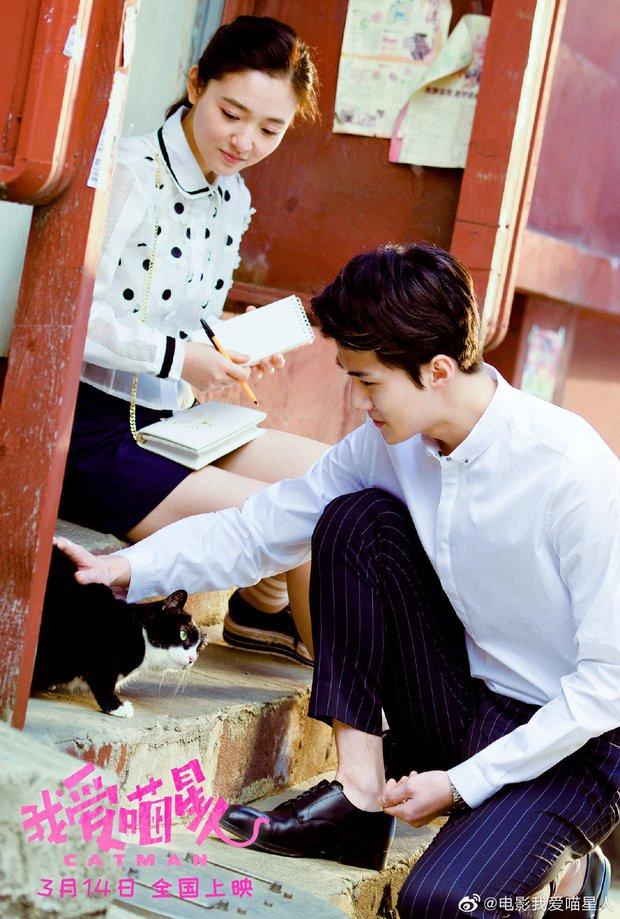 Phim hợp tác Trung - Hàn của Sehun lại hoãn chiếu đột ngột trước giờ G, MXH khóc ròng vì lỗ nặng tiền vé đặt trước - Ảnh 2.