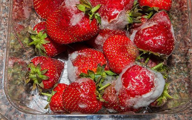 WHO cảnh báo 4 loại thực phẩm cực quen là chất gây ung thư cấp độ 1 mà bạn cần tránh xa - Ảnh 2.