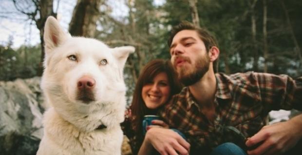 Nghiên cứu gây sốc: Chó cũng biết ghen bóng ghen gió với chủ, vậy mới thấy chúng giống người đến mức nào - Ảnh 1.