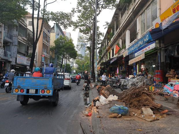 TP.HCM: Cây xanh ngã đổ ra đường, đè trúng tài xế Gojek đang chở khách nữ lưu thông - Ảnh 3.