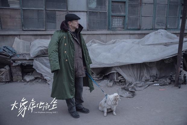 Phim Trung khiến đạo diễn treo cổ tự tử trước ngày công chiếu, vượt mặt Trương Nghệ Mưu thắng giải cao nhất - Ảnh 6.