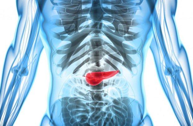Cứ ăn cơm lại xuất hiện 3 dấu hiệu này chứng tỏ tuyến tụy kêu cứu, bạn nên đi khám sớm trước khi ung thư hình thành - Ảnh 1.