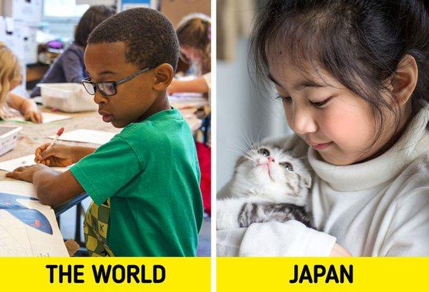 6 bí mật rất đáng học hỏi từ hệ thống giáo dục Nhật Bản, đặt nền móng định hướng để trẻ em thành công từ rất sớm - Ảnh 1.