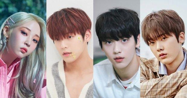 Thực hư chuyện Kpop tồn tại hội 4 anh chị em đều là idol, debut gần thập kỉ rồi mà tới giờ fan mới nhận ra? - Ảnh 18.