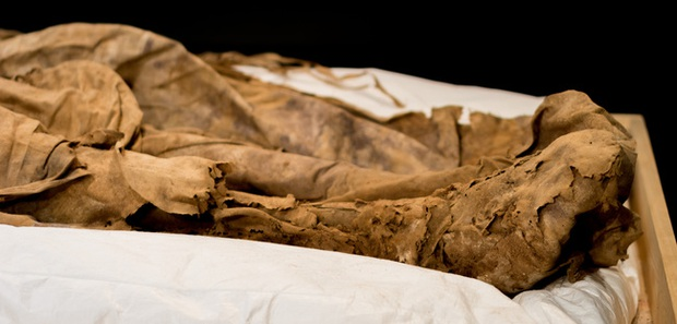 Chụp X-quang quan tài chứa xác ướp 300 tuổi của người đàn ông, các nhà khoa học ngỡ ngàng phát hiện bào thai ngay dưới chân - Ảnh 3.