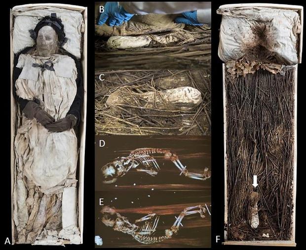 Chụp X-quang quan tài chứa xác ướp 300 tuổi của người đàn ông, các nhà khoa học ngỡ ngàng phát hiện bào thai ngay dưới chân - Ảnh 4.
