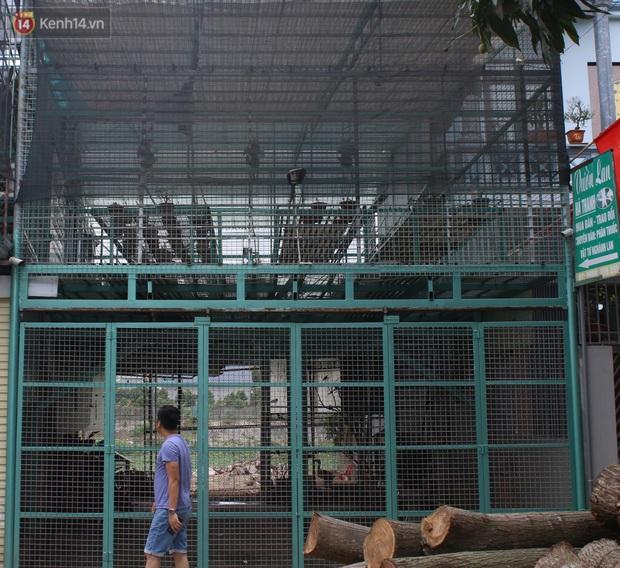 Thông tin bất ngờ vụ chủ vườn hoa lan đột biến ở Hà Nội bị tố ôm hàng trăm tỷ bỏ trốn - Ảnh 1.