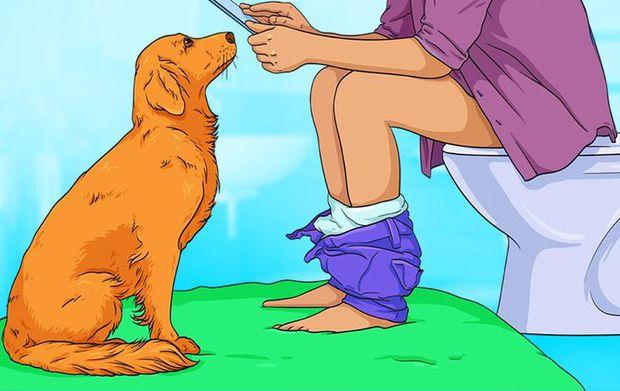 7 hành động kỳ quái của chú chó bạn nuôi và lý do đằng sau ai cũng cần biết, đặc biệt là hành động cuối cùng - Ảnh 1.