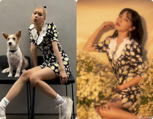 Rosé (BLACKPINK) gây sốt bởi váy hoa cúc 40 triệu đồng, nhưng netizen lại so kè nàng với cao thủ hack tuổi này - Ảnh 6.