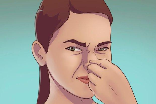 5 dấu hiệu cho thấy rệp đang làm tổ trong nhà của bạn, hãy cẩn thận - Ảnh 3.