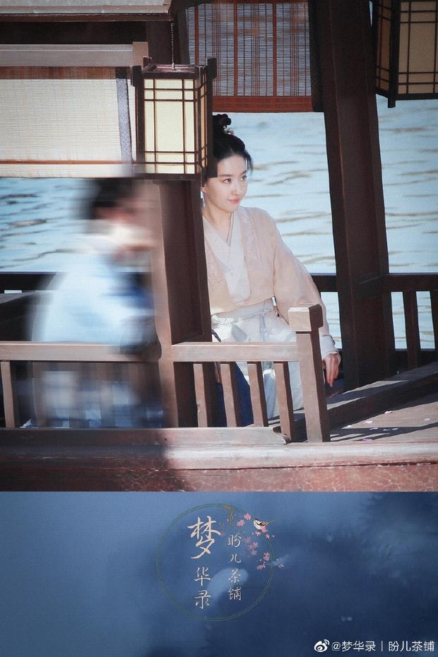 Chỉ với 1 bức ảnh, Lưu Diệc Phi khiến Cnet điên đảo: Visual kiều diễm đã trở lại, góc nghiêng đúng là thần thánh - Ảnh 6.