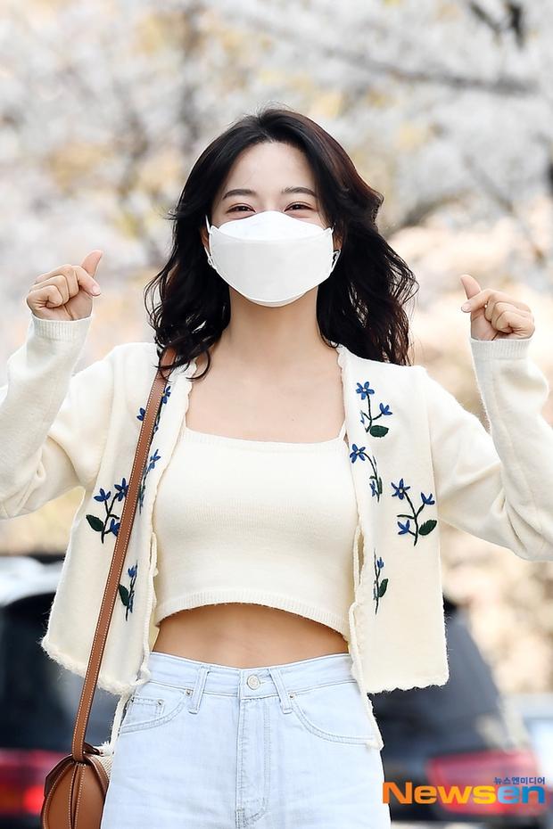 Mùa hoa anh đào nở rộ, sao Hàn đua nhau check-in sống ảo: Loạt mỹ nhân khoe sắc, idol đến diễn viên ra đường là có ảnh đẹp - Ảnh 7.