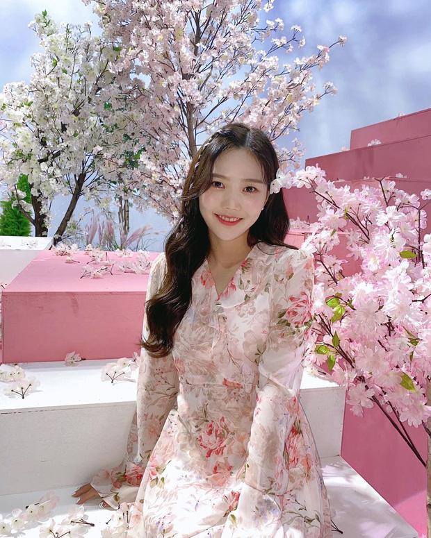 Mùa hoa anh đào nở rộ, sao Hàn đua nhau check-in sống ảo: Loạt mỹ nhân khoe sắc, idol đến diễn viên ra đường là có ảnh đẹp - Ảnh 8.