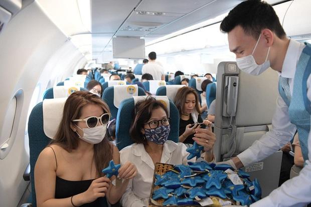 Vietnam Airlines tung hàng loạt chú sao biển bằng bông trên các chuyến bay khiến dân mạng siêu thích thú, và đằng sau còn ẩn chứa một ý nghĩa đặc biệt - Ảnh 1.