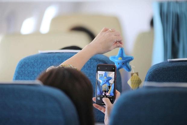 Vietnam Airlines tung hàng loạt chú sao biển bằng bông trên các chuyến bay khiến dân mạng siêu thích thú, và đằng sau còn ẩn chứa một ý nghĩa đặc biệt - Ảnh 3.