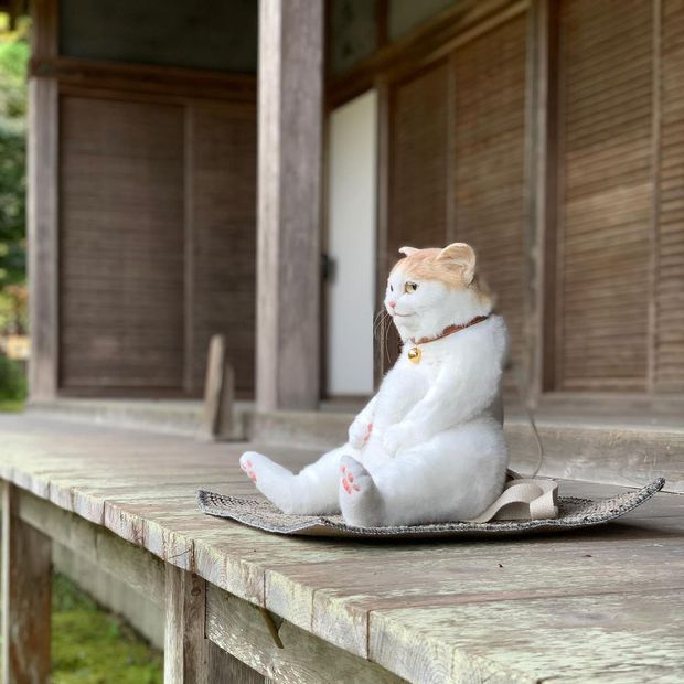 Balo mèo gây lú phá đảo trái tim netizen Nhật, giống thật tới nỗi hội chị em nhìn qua đã muốn xuống tiền mua luôn - Ảnh 2.