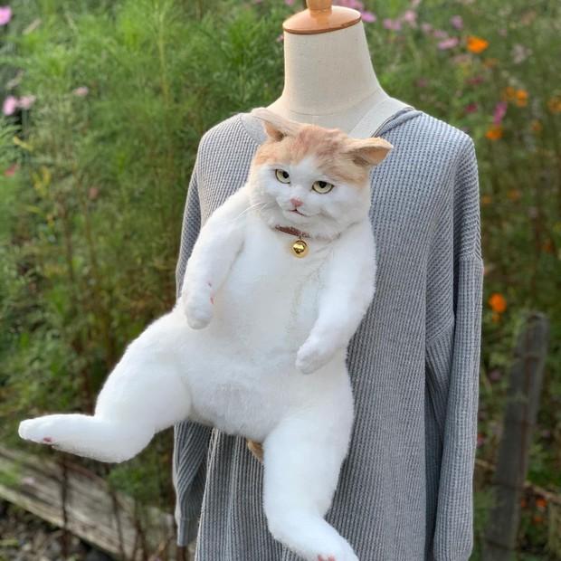 Balo mèo gây lú phá đảo trái tim netizen Nhật, giống thật tới nỗi hội chị em nhìn qua đã muốn xuống tiền mua luôn - Ảnh 3.